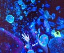 Glow In The Dark Bubbles