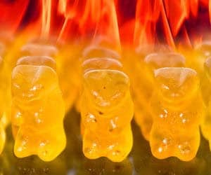 Hot Gummy Bears