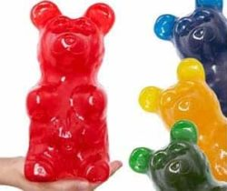 Worlds Largest Gummy Bear