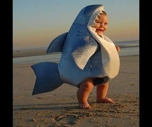 Shop for shark halloween costume baby online at Target. Free shipping on purchases over $35 and save 5% every day with your Target REDcard.