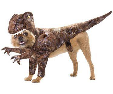 RAPTOR-DOG-COSTUME