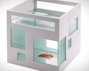 Fish Hotel Aquarium