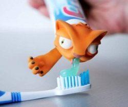 Cat Toothpaste Cap Squeeze