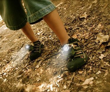 Flashlight Shoe