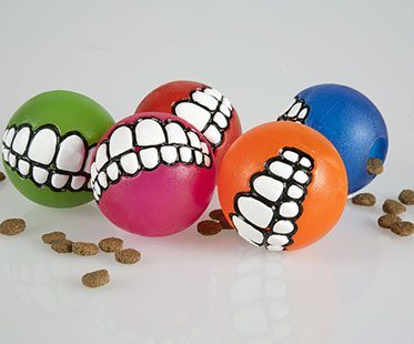 SMILING-DOG-BALLS