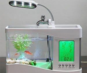 Fish Tank Clock