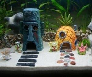 spongebob aquarium set. Black Bedroom Furniture Sets. Home Design Ideas