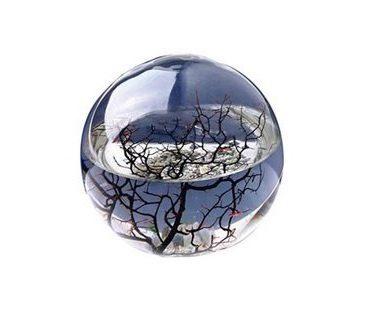Ecosystem Spheres