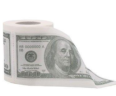 MONEY-TOILET-ROLL