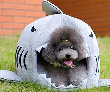SHARK-BED-FOR-PETS