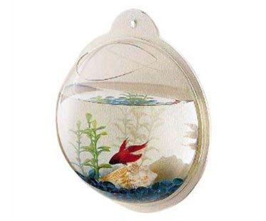 WALL-MOUNTED-FISH-BOWLSWALL-MOUNTED-FISH-BOWLS