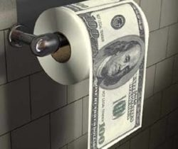 money toilet roll