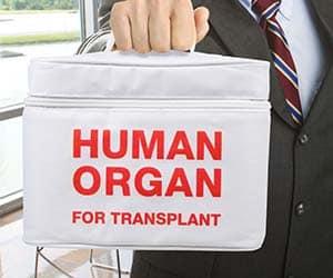 organ transplant lunch bag