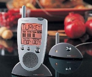 talking meat thermometer