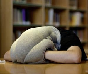 the nap pillow