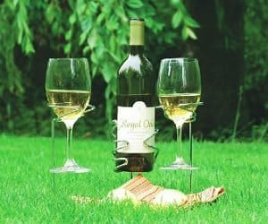 wine picnic stakes