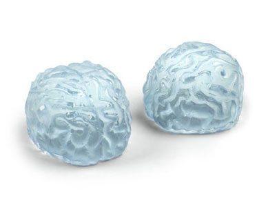 BRAIN-ICE-CUBE