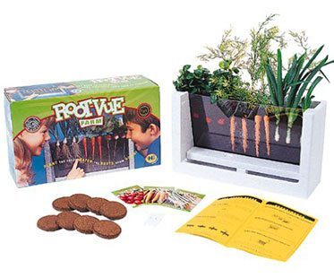 ROOT-VIEW-GROWING-BOX