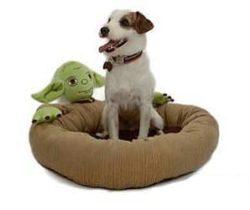 Yoda pet bed