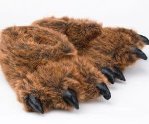 bear feet slippers