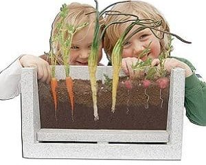 root view growing box