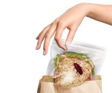 BUG-SANDWICH-BAG