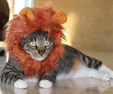 LION-MANE-WIG