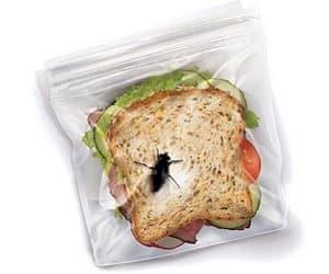 bug sandwich bags