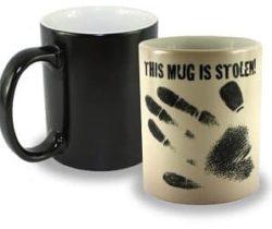 stolen heat changing mug