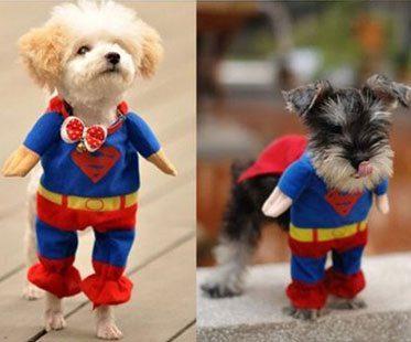 SUPERMAN-PET-COSTUMES