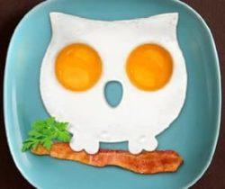 owl shaped egg mold