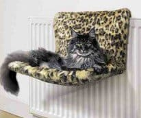 radiator cat bed