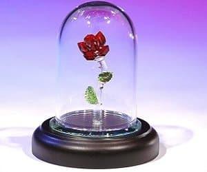 crystal enchanted rose