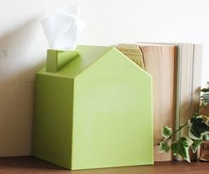 house shaped tissue box