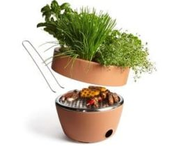 bbq and herb garden