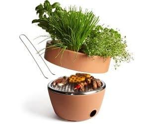 bbq and herb garden