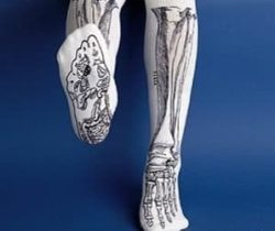 bone-socks