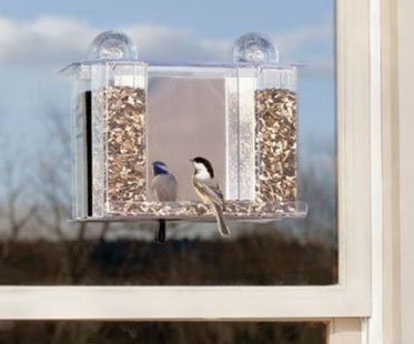 ONE-WAY-MIRROR-BIRD-FEEDER