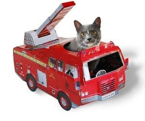 fire truck cat playhouse