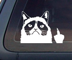 grumpy cat car decal