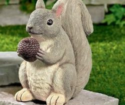 squirrel key hider