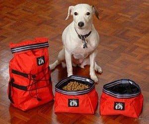 travel dog bowls