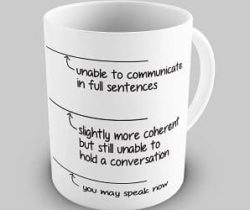 you may speak now mug