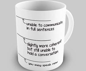 you may speak now mug