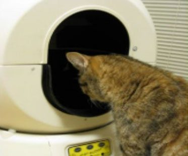 SELF-CLEANING-LITTER-BOX