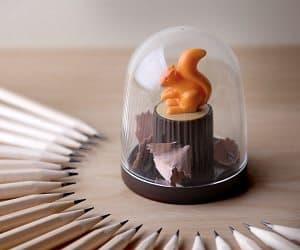 squirrel pencil sharpener