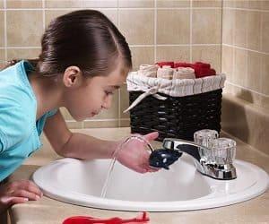 whale faucet fountain