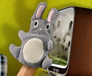 dust bunny mitt