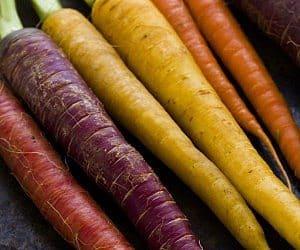 rainbow carrot seeds
