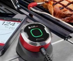 smart grilling thermometer